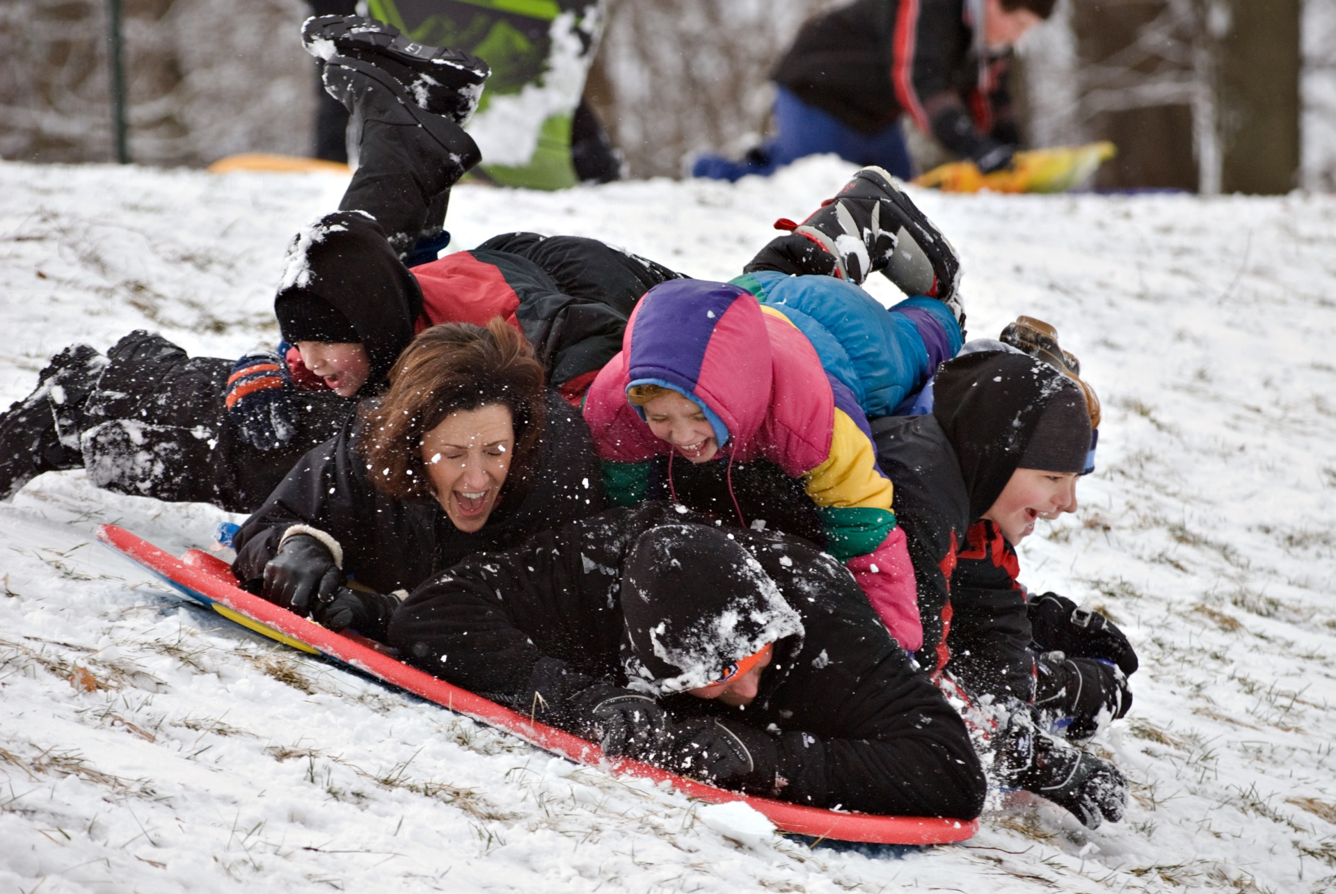 The whole family piles onto each other as they sled down the hill